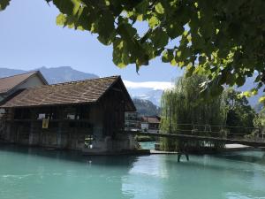 Schweiz, im Berner Oberland