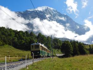 Zug zum Jungfraujoch, der höchsten Eisenbahnstation Europas