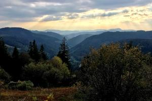 Schwarzwaldstimmung